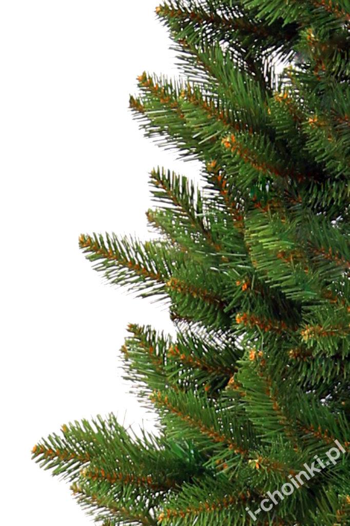 Zbliżenie drzewka typu świerk ścinany